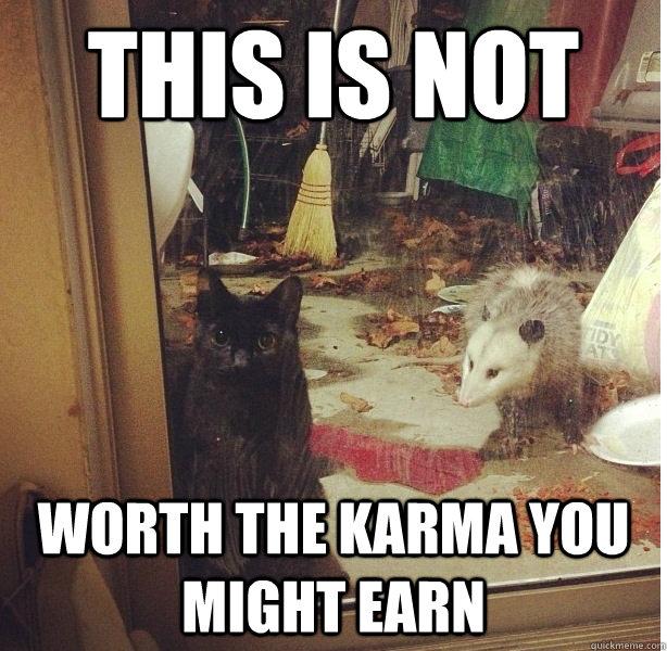 Understatement Funny Understatement Cat mem...