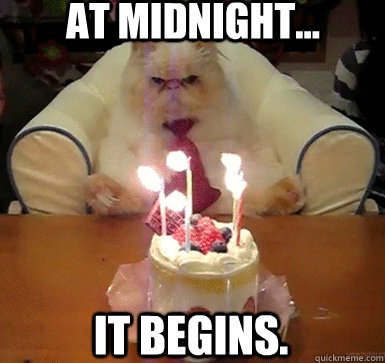 At midnight... it begins. - At midnight... it begins.  Cake Day Cat