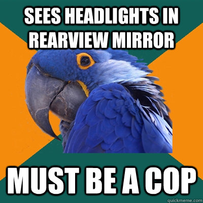Sees headlights in rearview mirror must be a cop - Sees headlights in rearview mirror must be a cop  Paranoid Parrot
