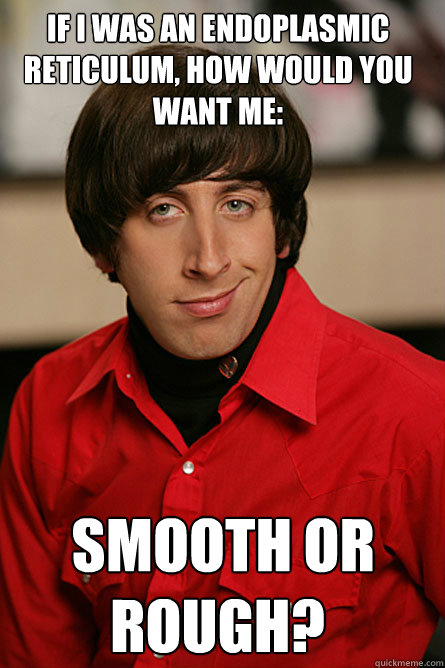 If I was an endoplasmic reticulum, how would you want me:  smooth or rough?  Pickup Line Scientist
