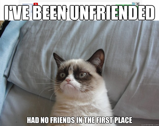 i've been unfriended had no friends in the first place  - i've been unfriended had no friends in the first place   Grumpy Cat on Being Unfriended