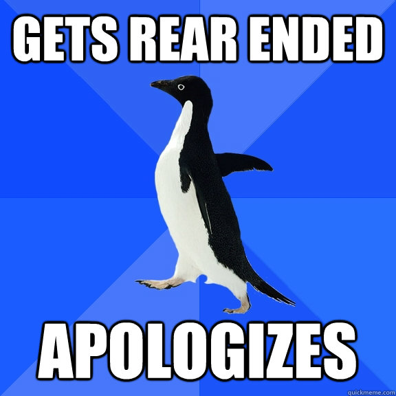 Gets rear ended apologizes - Gets rear ended apologizes  Socially Awkward Penguin