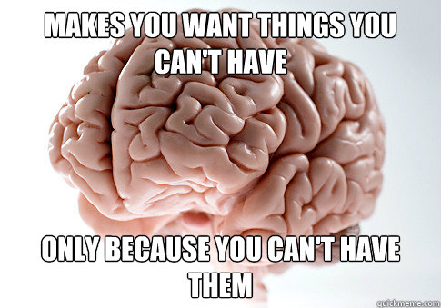 Makes you want things you can't have only because you can't have them - Makes you want things you can't have only because you can't have them  Scumbag Brain