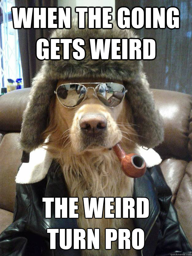 When the going gets weird the weird turn pro - When the going gets weird the weird turn pro  Overly Suave Dog