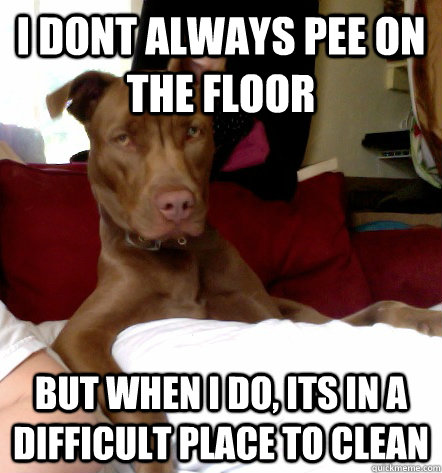 I dont always pee on the floor but when i do, its in a difficult place to clean