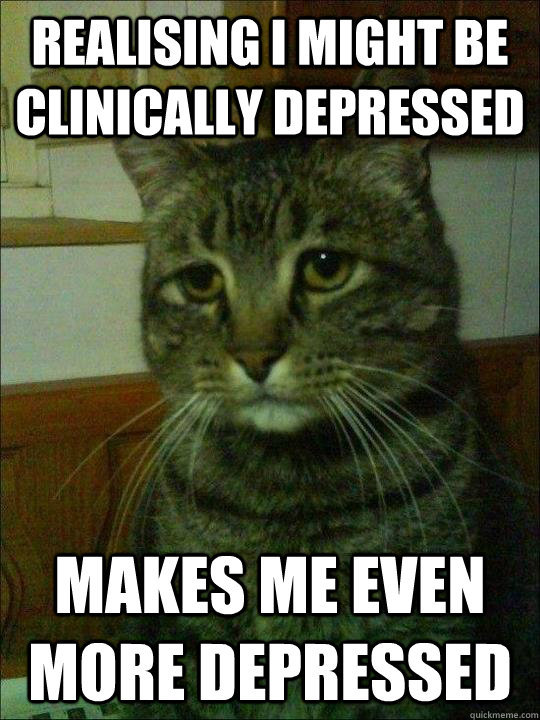 Realising I might be clinically depressed Makes me even more depressed  Depressed cat