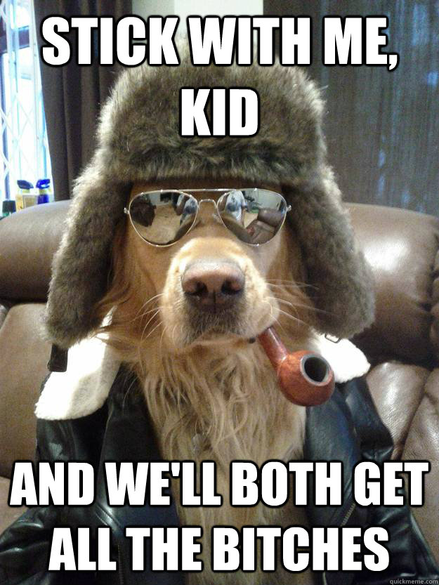Stick with me, kid And we'll both get all the bitches  Overly Suave Dog