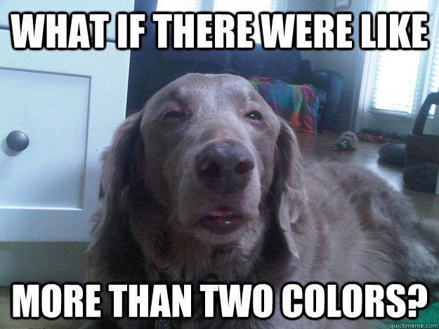 What if there were like More than two colors? - What if there were like More than two colors?  10 Dog
