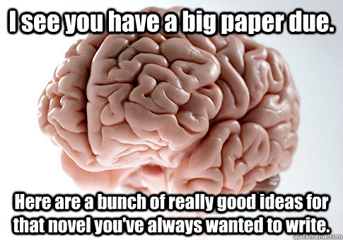 I see you have a big paper due. Here are a bunch of really good ideas for that novel you've always wanted to write.  - I see you have a big paper due. Here are a bunch of really good ideas for that novel you've always wanted to write.   Scumbag Brain