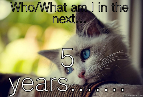 WHO/WHAT AM I IN THE NEXT... 5 YEARS....... First World Problems Cat