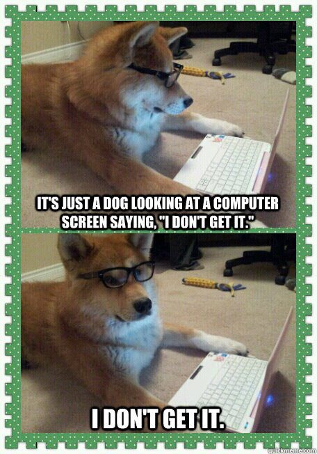 It's just a dog looking at a computer screen saying,