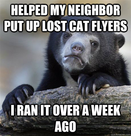 helped my neighbor put up lost cat flyers  i ran it over a week ago - helped my neighbor put up lost cat flyers  i ran it over a week ago  Confession Bear