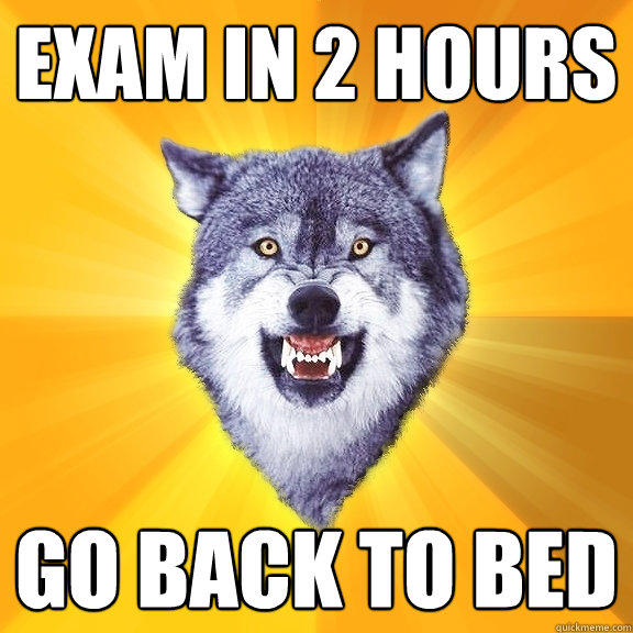 Exam in 2 Hours Go back to bed - Exam in 2 Hours Go back to bed  Courage Wolf