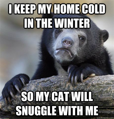 I keep my home cold in the winter So my cat will snuggle with me - I keep my home cold in the winter So my cat will snuggle with me  Confession Bear