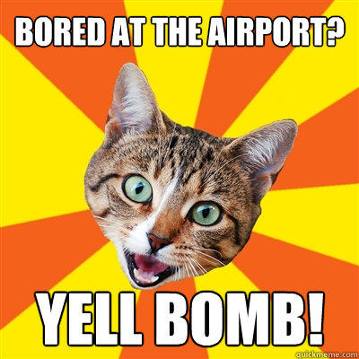 Bored at the airport? Yell bomb!  Bad Advice Cat