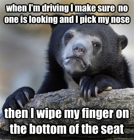 when I'm driving I make sure  no one is looking and I pick my nose then I wipe my finger on the bottom of the seat - when I'm driving I make sure  no one is looking and I pick my nose then I wipe my finger on the bottom of the seat  Confession Bear