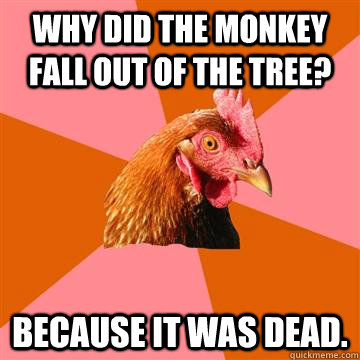 Why did the monkey fall out of the tree? Because it was dead.  Anti-Joke Chicken