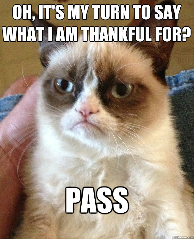oh, it's my turn to say what i am thankful for? Pass  Grumpy Cat