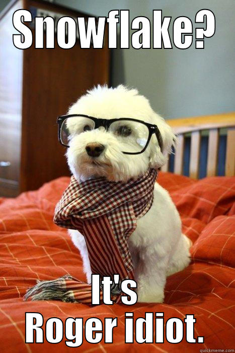 Bichon Mr. Roger - SNOWFLAKE? IT'S ROGER IDIOT. Hipster Dog