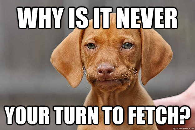 Why is it never your turn to Unamused Puppy Meme