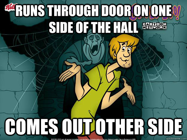 runs through door on one side of the hall comes out other side - runs through door on one side of the hall comes out other side  Irrational Shaggy