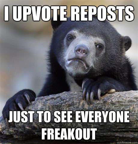 I upvote reposts just to see everyone freakout - I upvote reposts just to see everyone freakout  Confession Bear