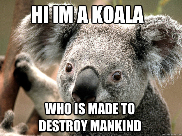 hi im a koala who is made to destroy mankind
