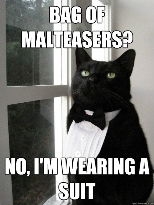 Bag of malteasers? No, i'm wearing a suit - Bag of malteasers? No, i'm wearing a suit  One Percent Cat