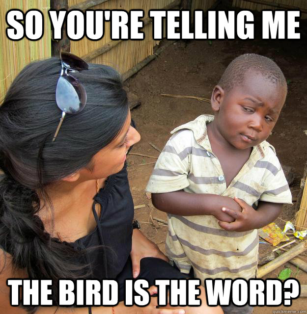 SO YOU'RE TELLING ME THE BIRD IS THE WORD? - SO YOU'RE TELLING ME THE BIRD IS THE WORD?  Sceptical 3rd world child