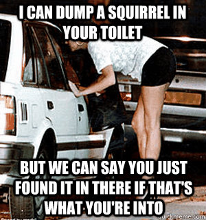 I can dump a squirrel in your toilet but we can say you just found it in there if that's what you're into - I can dump a squirrel in your toilet but we can say you just found it in there if that's what you're into  Karma Whore