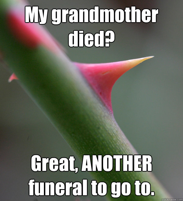 My grandmother died? Great, ANOTHER funeral to go to.  Self Important Prick