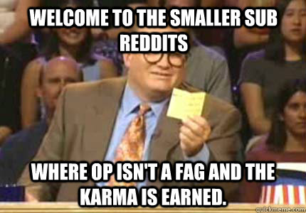 Welcome to the smaller sub reddits Where OP isn't a fag and the karma is earned. - Welcome to the smaller sub reddits Where OP isn't a fag and the karma is earned.  Misc