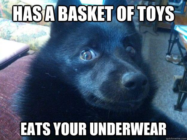 Funny Underwear Meme : Funny memes from book s bolin mako underwear scene komic