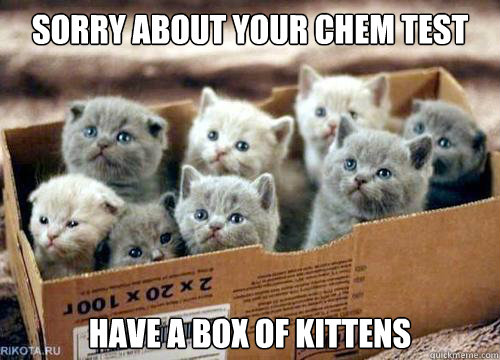 Sorry about your chem test have a box of kittens  Box of Kittens