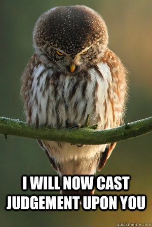i will now cast judgement upon you  Angry Owl