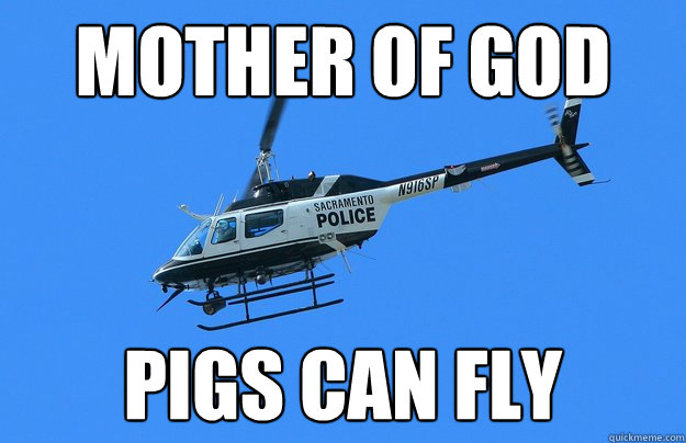 mother of god pigs can fly - mother of god pigs can fly  When Pigs Fly
