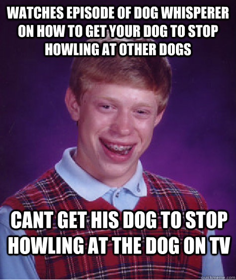 Watches episode of dog whisperer on how to get your dog to stop howling at other dogs cant get his dog to stop howling at the dog on tv - Watches episode of dog whisperer on how to get your dog to stop howling at other dogs cant get his dog to stop howling at the dog on tv  Bad Luck Brian