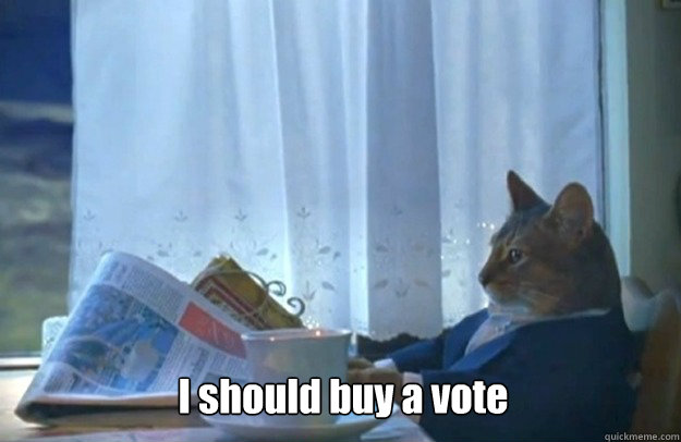 I should buy a vote - I should buy a vote  Sophisticated Cat