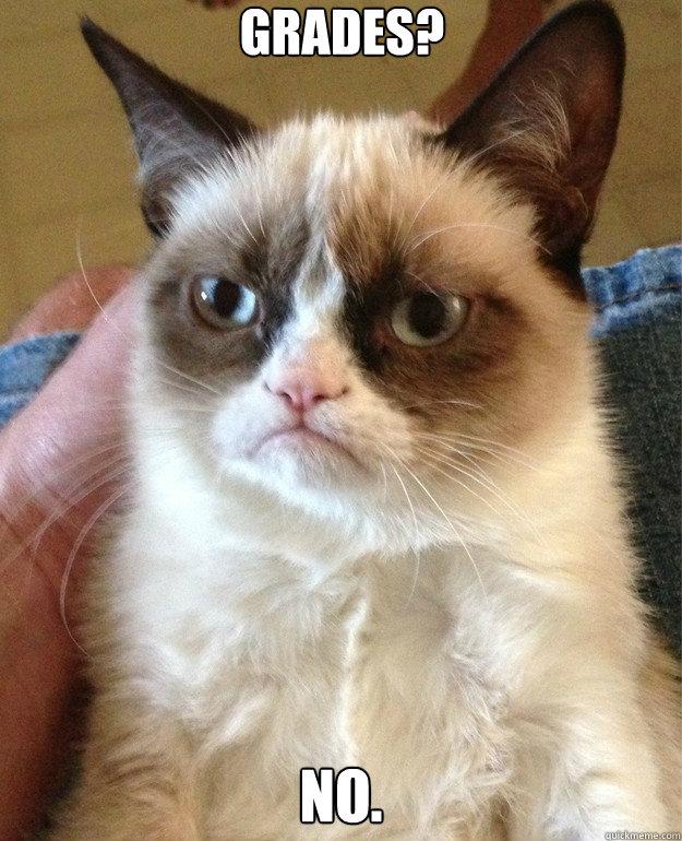 Grades? No. - Grades? No.  Misc