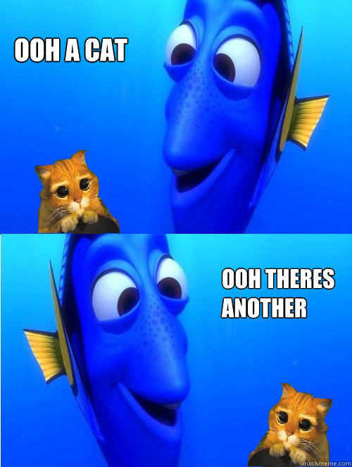 ooh a cat  ooh theres another  - ooh a cat  ooh theres another   dory