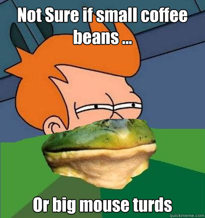 Not Sure if small coffee beans ... Or big mouse turds