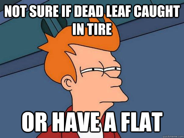 not sure if dead leaf caught in tire Or have a flat - not sure if dead leaf caught in tire Or have a flat  Futurama Fry