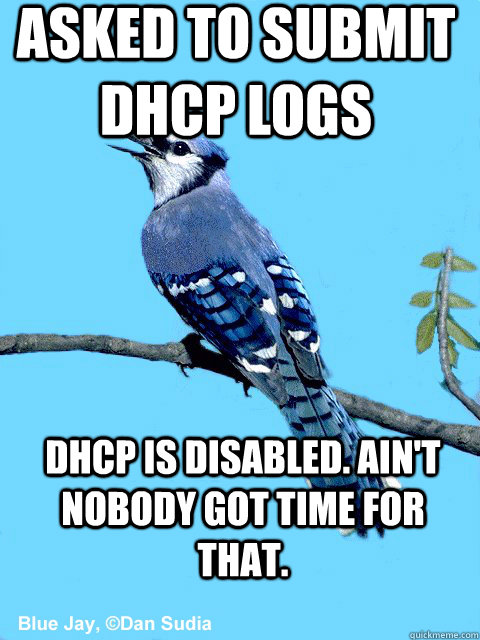 Asked to submit DHCP logs DHCP is disabled. Ain't nobody got time for that. - Asked to submit DHCP logs DHCP is disabled. Ain't nobody got time for that.  Blue Team Bird