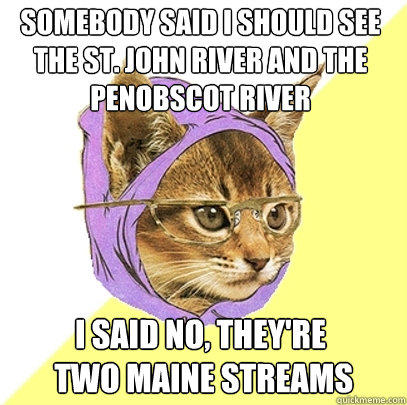 Somebody said I should see The St. John River and the Penobscot River  I said no, they're   two Maine streams - Somebody said I should see The St. John River and the Penobscot River  I said no, they're   two Maine streams  Hipster Kitty