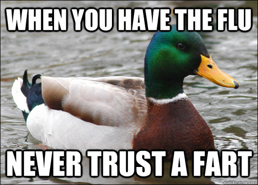 When you have the flu never trust a fart - When you have the flu never trust a fart  Actual Advice Mallard