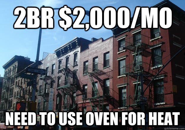 2br $2,000/mo Need to use oven for heat  Overpriced New York Apartment