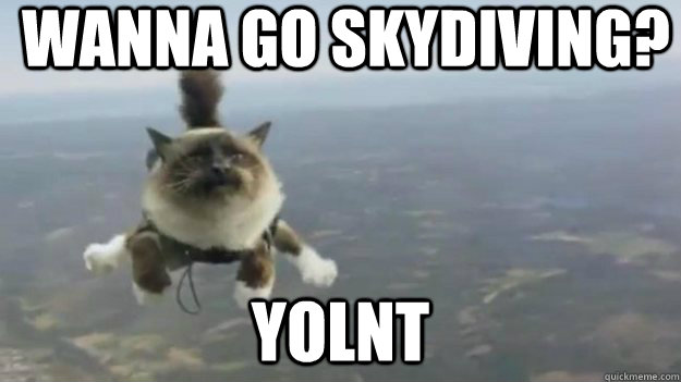 Wanna go Skydiving? YOLNT  YOLNT