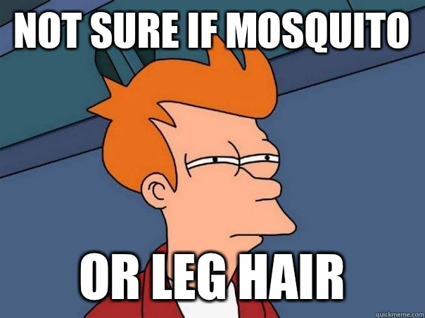 not sure if mosquito or leg hair  - not sure if mosquito or leg hair   Futurama Fry