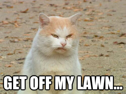 get off my lawn... -  get off my lawn...  Disgusted Cat