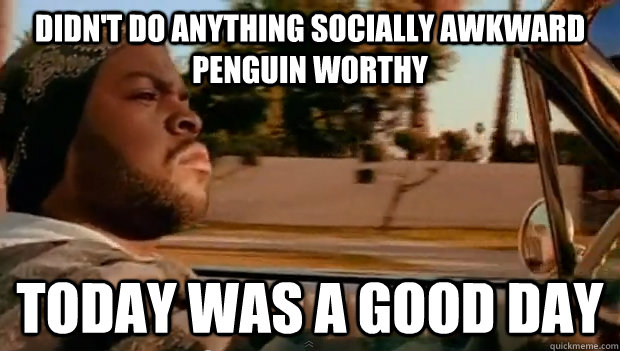 Didn't do anything Socially awkward penguin worthy Today was a good day - Didn't do anything Socially awkward penguin worthy Today was a good day  Misc